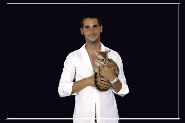 家有新宠猫咪 新欢旧爱如何相处,猫咪不乖?