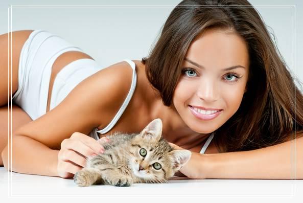 宠物猫咪适合年轻白领饲养的图片