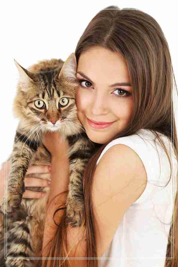 小猫猫咪的基因,也是一种美,养猫记