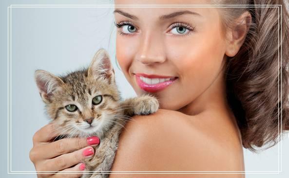 介绍多款适合猫咪的饮水器,猫自动饮水